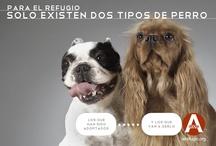 #adoptandoquesgerundio