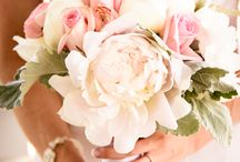Bridal Bouquet and Flowers / Great ideas for Bridal Bouquets and Wedding Floral Arrangements