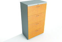 Muebles de Guardado / Todos necesitamos guardar cosas, los muebles de guardado de PM Steele son una excelente opción para optimizar espacios.