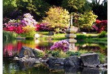 Japanese Gardens / by marjorie mc caulay