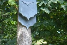 Birds and bats houses