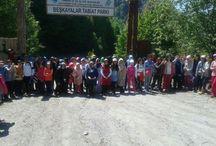 Doğada 1 GÜN – İzmit Aytepe'de Trekking / Doğada 1 GÜN – İzmit Aytepe'de Trekking