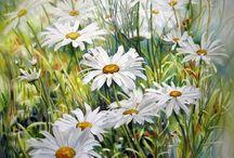 Art-daisy