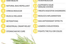 Essential Oils / Deliciously scented essential oils and their health benefits