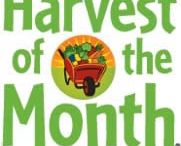 Harvest of the Month / Harvest of the Month recipes and ideas.