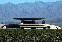 Wine & Winery design