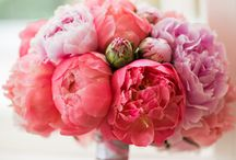 weddingflower peonie