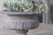tuin/bloemen
