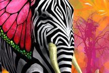 Fantasiedieren ( voor school ) / Kat kop Eekhoorn staart achterlijf Vlinder oren Voorpoten van egel en koala Zo ziet mijn fantasiedier er uit  Dit bord is voor school