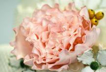 Sugar Flowers / by Allene Nicolai