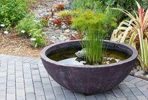 Garden: Water Features & Rain Barrels / by Susy Morris