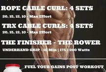 Arm Workouts / Follow our arm workout programs for dramatic increases in power, strength and muscle size.