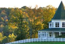 Lion & Lamb-Whitestone Country Inn / The Lion and Lamb Reception Hall has 3 suites with a breathtaking view of the Smokey Mountains.  We also host wedding receptions, proms, awards ceremonies, birthday parties, anniversaries, and any other event up to 200 people.