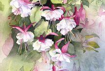 obrazy kolor kwiaty
