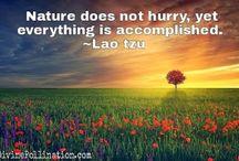 LaoZi quotes