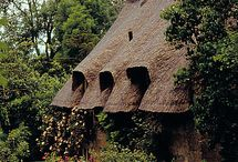 Thatched cottages / houses