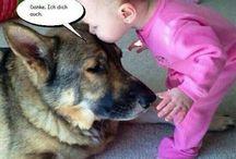 Kind und Tiere