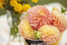 Canned flowers