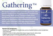 Young Living Gathering Essential Oils