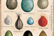 Huevos de dragon