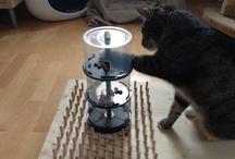 Katzen ideen
