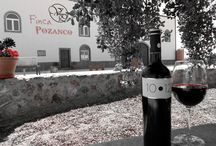 "Winery ""Viñedos de Pozanco"" / ** In vino veritas ** ""A wine wonderland, a park of pleasure where people of all ages can enjoy all the best things in life: the Wine""."