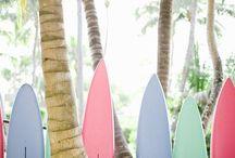 SURF // STAFF