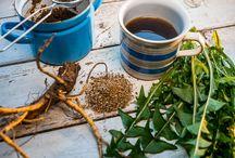 Zdraví & bylinky