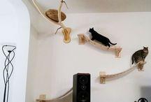 Arquitetura PET