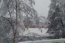 talvi 2015