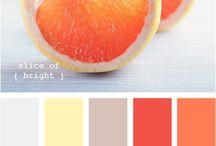 Citrus Colour Palettes