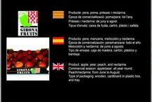 Girona Fruits SCCL / Cooperativa de Fruita de Bordils