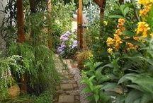 záhrady,chodníky