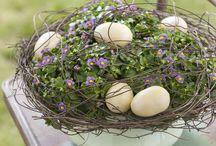 Veľkonočná výzdoba/Easter