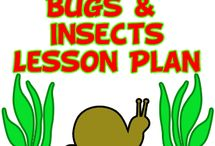 Preschool/bugs and flowers / by Amy Mandrola