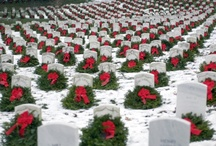 """Arlington National Cemetery / """"Freedom is never more than one generation away from extinction. We didn't pass it to our children in the bloodstream. It must be fought for, protected, and handed on for them to do the same, or one day we will spend our sunset years telling our children and our children's children what it was once like in the United States where men were free.""""  Ronald Reagan – 40th United States President (1911 – 2004)"""