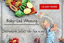 Baby Led Weaning (Baby Self-Feeding) / Introducing solid food to 6 months old babies by allowing them to self-feed