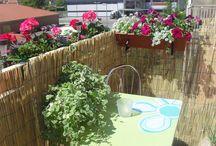 Balkony i ogrody
