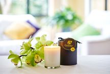 EarthShine Scented Candles / Our Beautiful Scented Candles