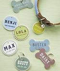 Crafts/DIY / by Jessica Donoghue