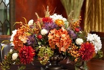 Fall decor / by Holly Gommeringer