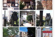 神社・寺・猫神様 / タイトル通りですが、猫を愛(め)でる訳ではありません。 猫神様は、猫にゆかりがある or 猫を祀っている神社や寺などです。