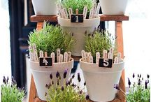 Pop Plant Wedding Decor
