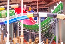 Venus SlydeTrap / You're about to be devoured by the Venus SlydeTrap! The only ride of its kind is right here at Aquatopia Indoor Waterpark, the Venus SlydeTrap combines 3 extraordinary waterslide experiences into one! With a heart-pounding drop, you travel down a serpentine flume before entering a 16-foot translucent sphere where you'll bank around 90 degree corners and oscillations. Hang on to your tube as you are being propelled into total darkness before hitting the rushing waters of the Manta.