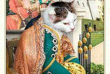 gatti e dipinti