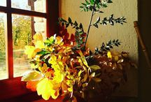 #buonadomenica #autumn #foglie #colori #coloridautunno #coloriautunnali #sole #countrylife #umbria #umbrialifestyle #umbria_love #ceramicart #ceramica #ceràmica