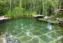 Eko pool