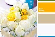 tipikus startup színek