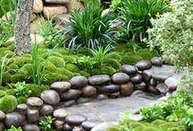 Záhrada / o záhrade, kvetoch, ...
