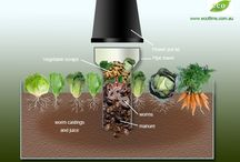 # garden idea